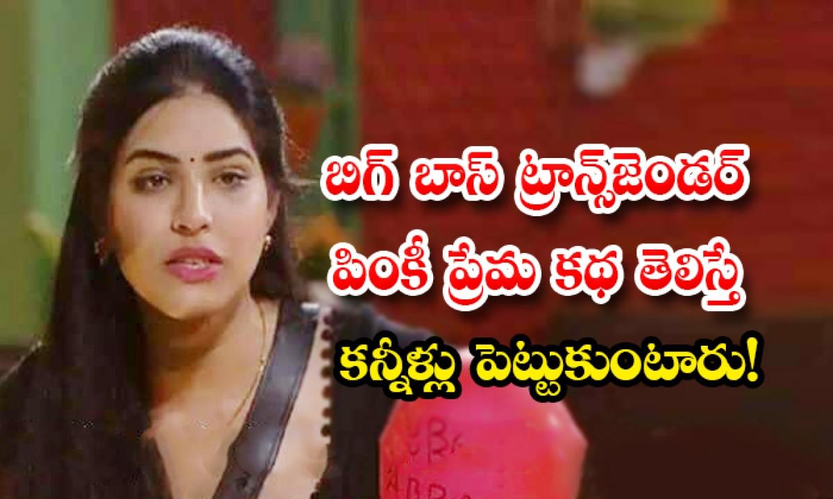 Priyanaka Reveals Her Emotional And True Love Story In Bigg Boss House-బిగ్ బాస్ ట్రాన్స్జెండర్ పింకీ ప్రేమ కథ తెలిస్తే కన్నీళ్లు పెట్టుకుంటారు-Latest News - Telugu-Telugu Tollywood Photo Image-TeluguStop.com