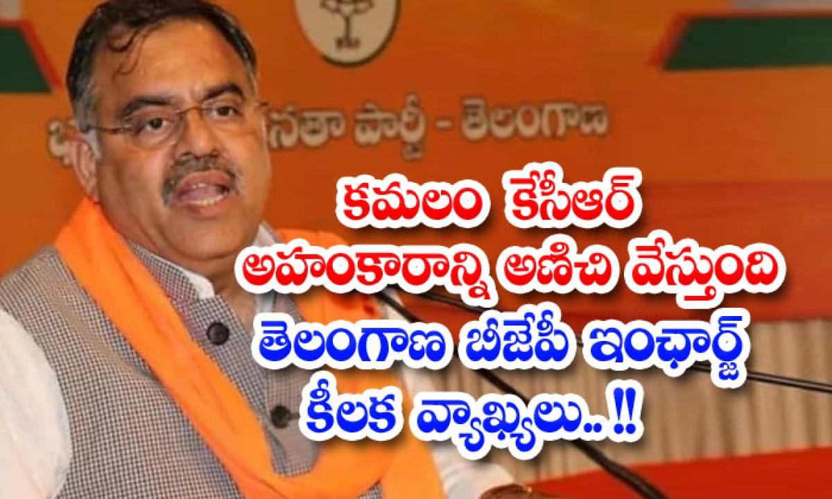 Telangana Bjp Incharge Tarun Chugh Comments On Trs-కమలం కేసీఆర్ అహంకారాన్ని అణిచి వేస్తుంది.. తెలంగాణ బీజేపీ ఇంఛార్జ్ కీలక వ్యాఖ్యలు.. -Breaking/Featured News Slide-Telugu Tollywood Photo Image-TeluguStop.com