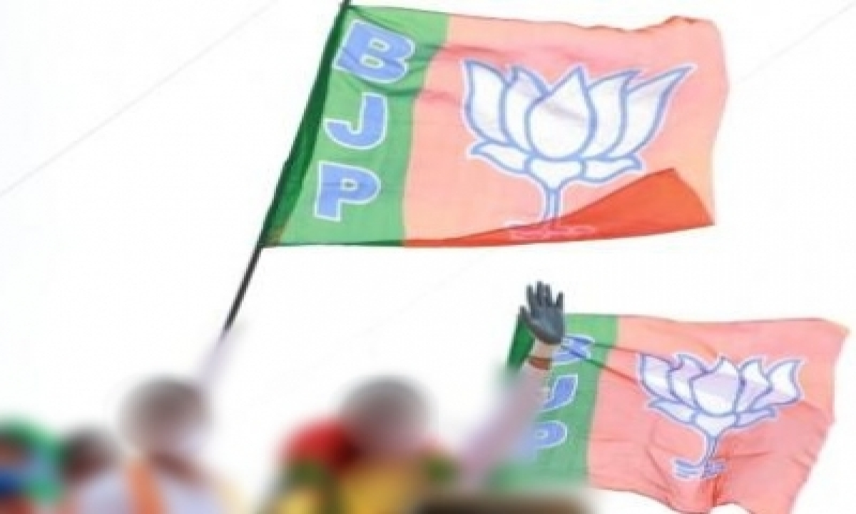 Bjp's Constituency Management Plan For Mp Assembly Seats Not Won Since 2013 – Delhi   India News   National,politics-TeluguStop.com