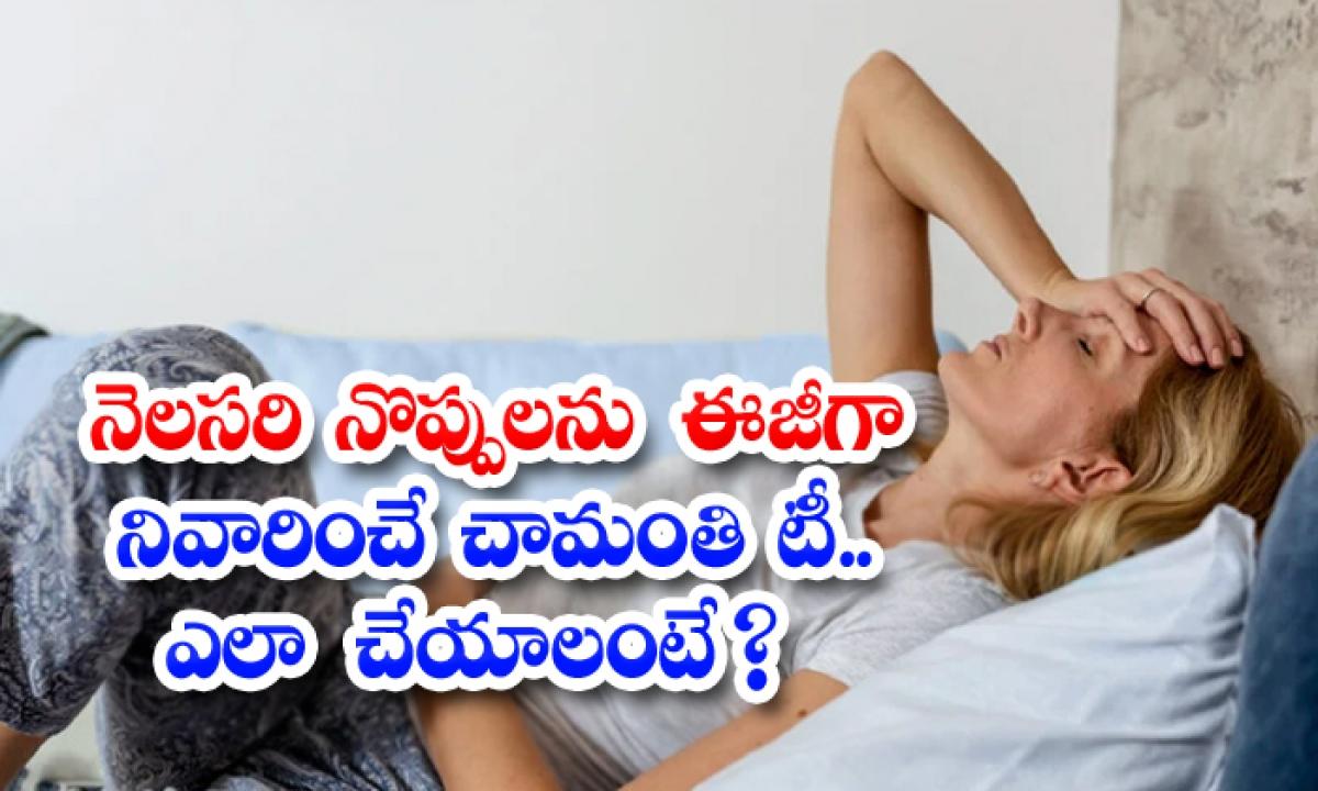 Chrysanthemum Tea Helps To Get Rid Of Menstrual Cramps-నెలసరి నొప్పులను ఈజీగా నివారించే చామంతి టీ..ఎలా చేయాలంటే-Latest News - Telugu-Telugu Tollywood Photo Image-TeluguStop.com