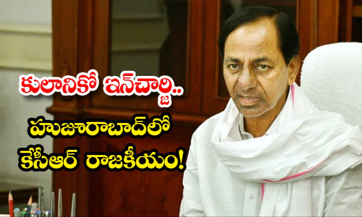 Cm Kcr Is Appointing One In Charge For One Cast In Huzurabad Constituency-TeluguStop.com