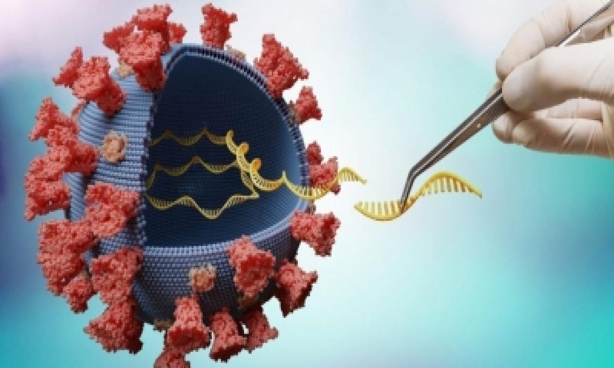 Consortium Of 4 Cities To Enhance Coronavirus Genome Surveillance-TeluguStop.com