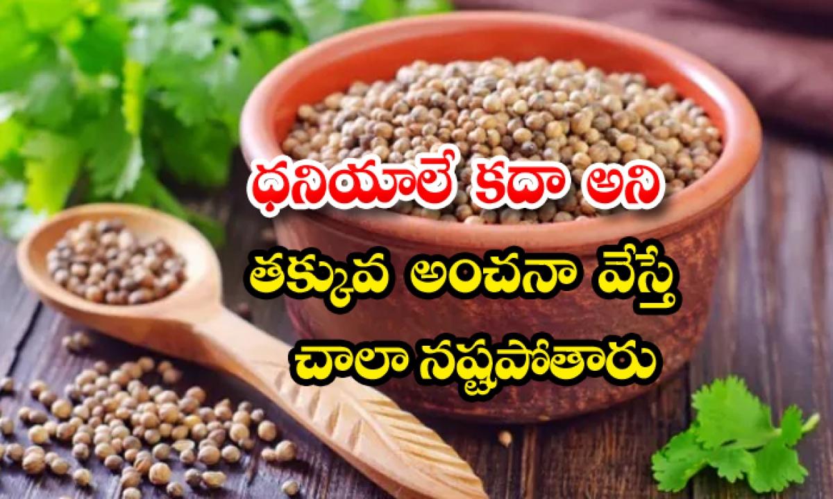 Health Benefits Of Coriander Seeds-ధనియాలే కదా అని తక్కువ అంచనా వేస్తే.. చాలా నష్టపోతారు..-Telugu Health-Telugu Tollywood Photo Image-TeluguStop.com