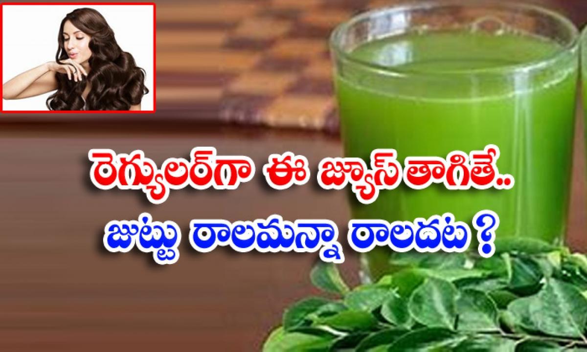 Curry Leaves Juice Benefits Of Curry Leaves Juice Curry Leaves Hair Fall-రెగ్యులర్గా ఈ జ్యూస్ తాగితే..జుట్టు రాలమన్నా రాలదట-Latest News - Telugu-Telugu Tollywood Photo Image-TeluguStop.com