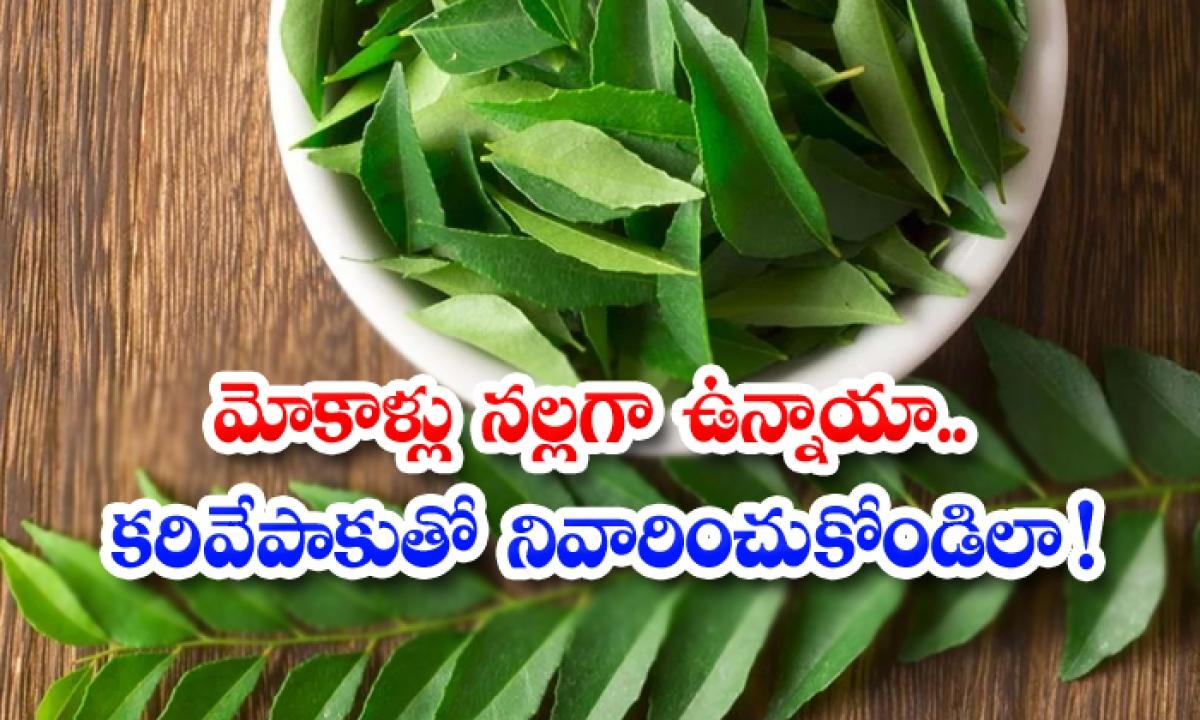Curry Leaves Helps To Reduce Dark Knees-మోకాళ్లు నల్లగా ఉన్నాయా.. కరివేపాకుతో నివారించుకోండిలా-Latest News - Telugu-Telugu Tollywood Photo Image-TeluguStop.com