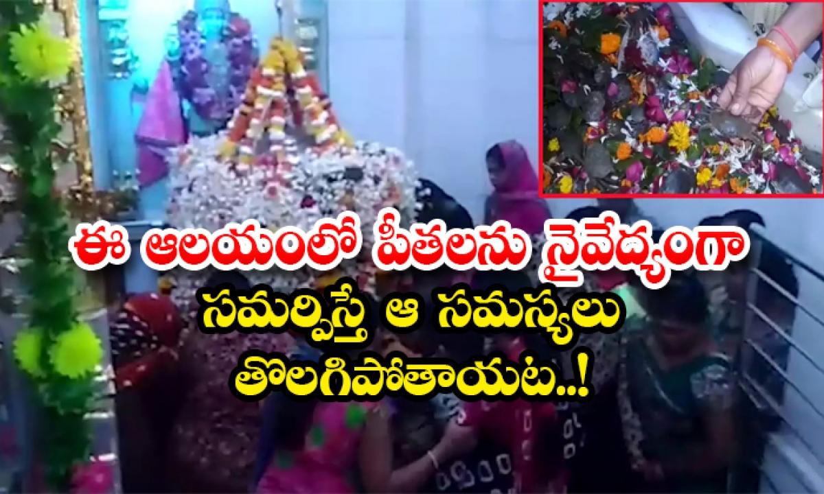 Devotees Offer Live Crabs To Lord Shiva At This Temple In Surat-ఈ ఆలయంలో పీతలను నైవేద్యంగా సమర్పిస్తే ఆ సమస్యలు తొలగిపోతాయట..-Latest News - Telugu-Telugu Tollywood Photo Image-TeluguStop.com