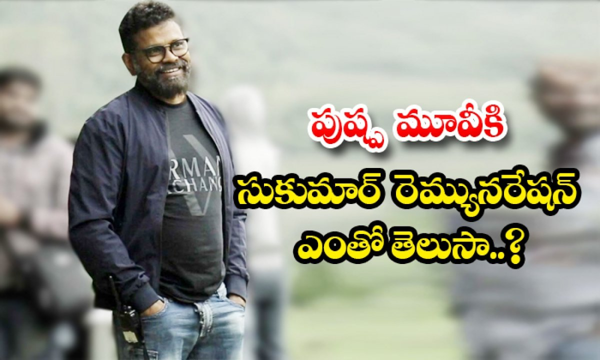 Director Sukumar Remuneration Details For Pushpa Movie-TeluguStop.com