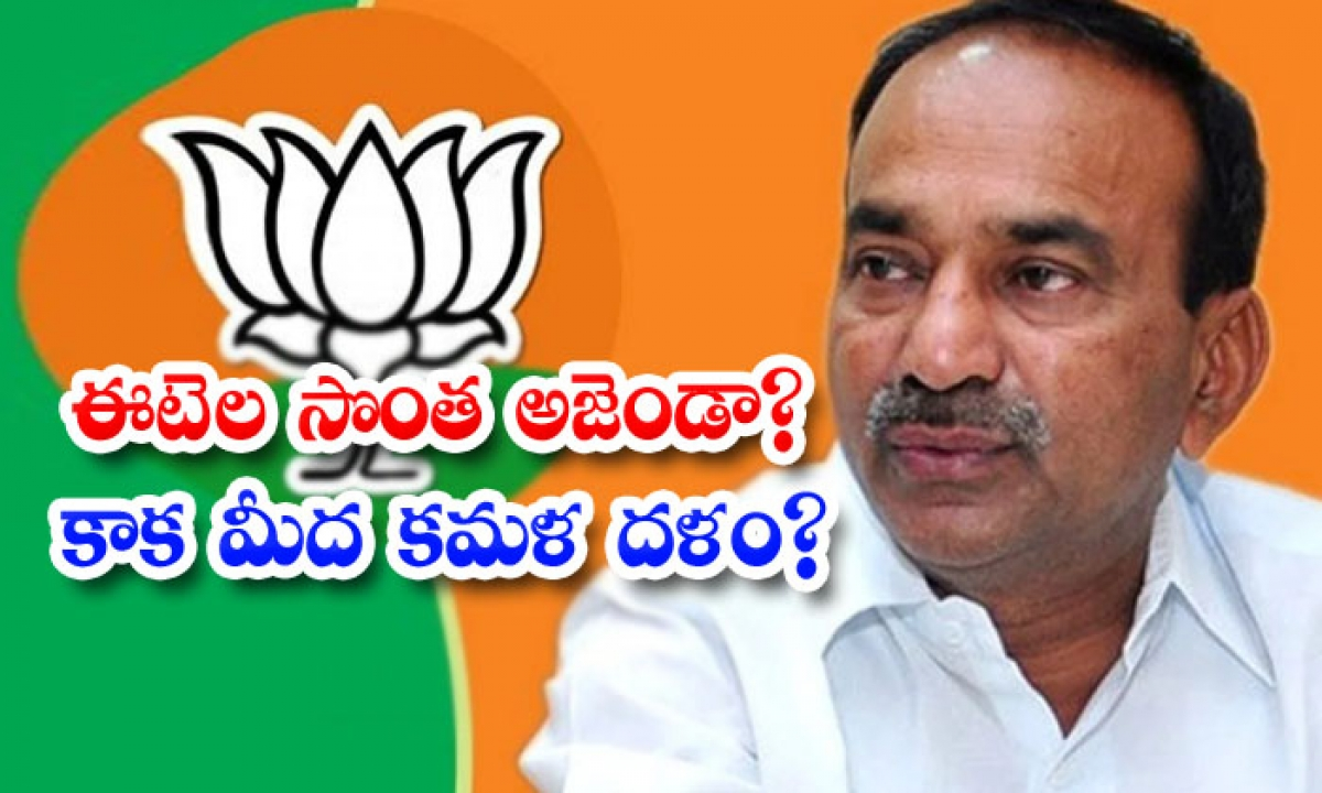 Telangna Bjp Leaders Angry On Etela Rajendar Behaviour-ఈటెల సొంత అజెండా కాక మీద కమల దళం -Political-Telugu Tollywood Photo Image-TeluguStop.com