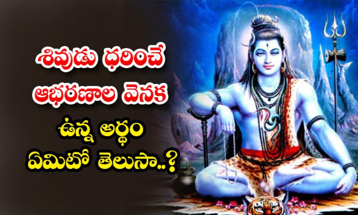 Facts Behind Precious Ornaments Of Maha Shiva-TeluguStop.com