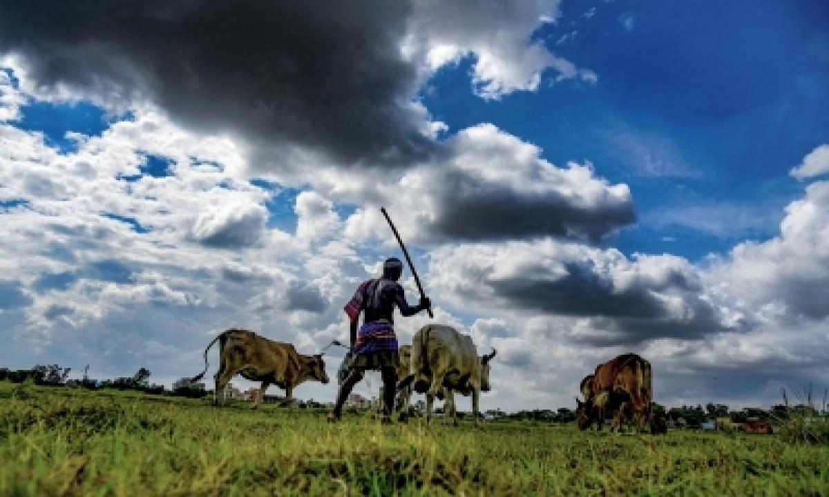 Farm Subsidies Distort Prices, Degrade Environment: Un-TeluguStop.com