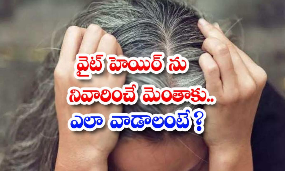 Fenugreek Leaves Helps To Reduce White Hair-వైట్ హెయిర్ ను నివారించే మెంతాకు..ఎలా వాడాలంటే-Latest News - Telugu-Telugu Tollywood Photo Image-TeluguStop.com
