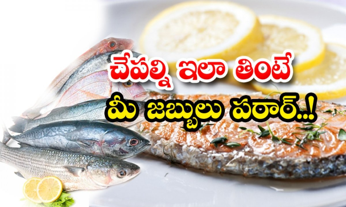 Take Weekly Twice Fishes That Will Protect You From The Diseases-చేపల్ని ఇలా తింటే.. మీ జబ్బులు పరార్-Latest News - Telugu-Telugu Tollywood Photo Image-TeluguStop.com