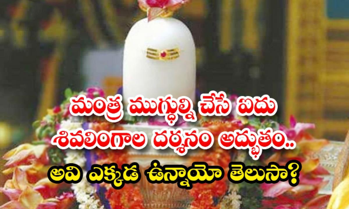 Five Shivalingas Of All Devotees Spread All Over The India-మంత్ర ముగ్ధుల్ని చేసే ఐదు శివలింగాల దర్శనం అద్భుతం.. అవి ఎక్కడ ఉన్నాయో తెలుసా-Latest News - Telugu-Telugu Tollywood Photo Image-TeluguStop.com