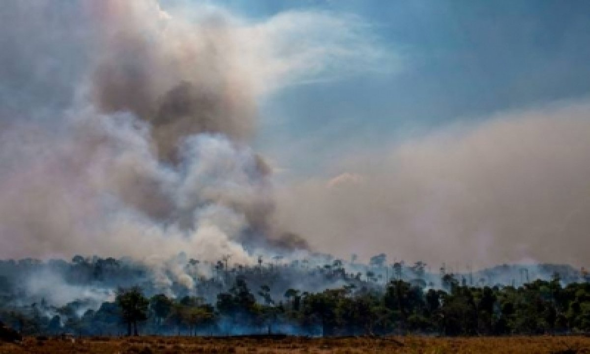 TeluguStop.com - Forest Fires In Chile Consume Over 3,200 Hectares