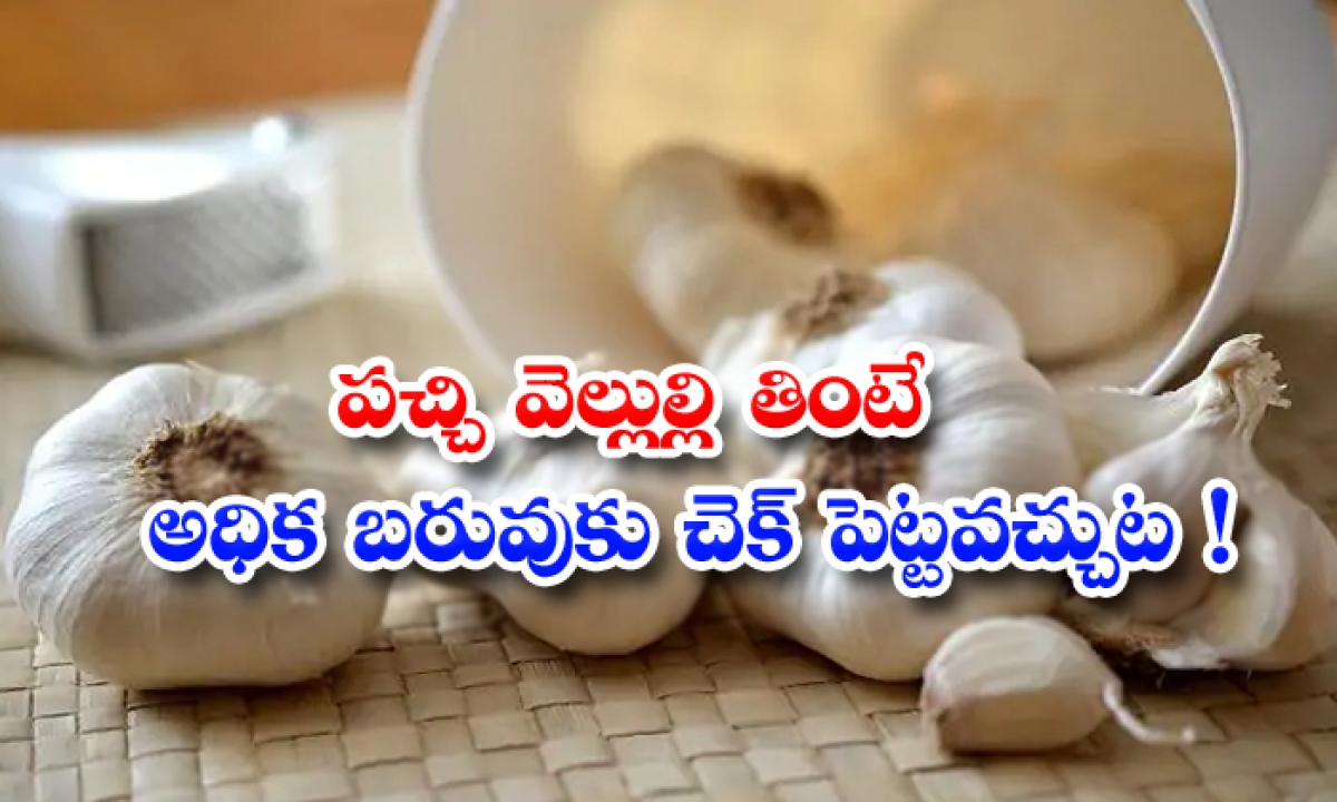 Does Garlic Helps To Lose Weight-పచ్చి వెల్లుల్లి తింటే.. అధిక బరువుకు చెక్ పెట్టవచ్చట-Latest News - Telugu-Telugu Tollywood Photo Image-TeluguStop.com