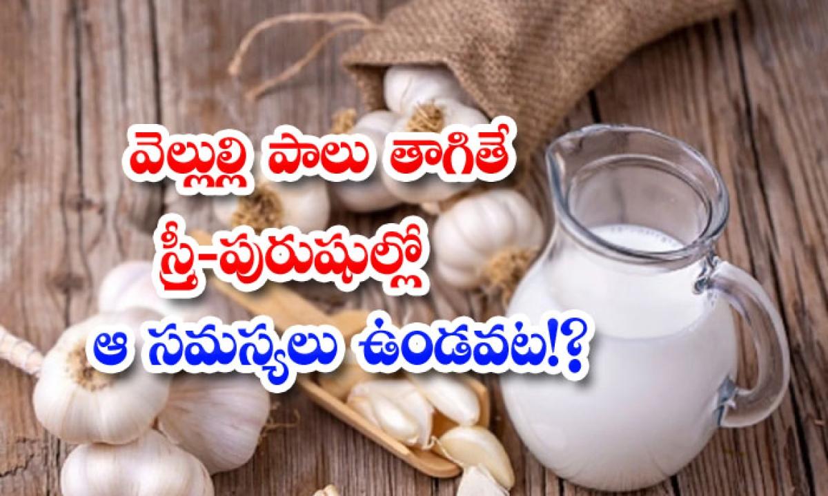 Garlic Milk Helps To Reduce Fertility Problems Naturally-వెల్లుల్లి పాలు తాగితే స్త్రీ-పురుషుల్లో ఆ సమస్యలు ఉండవట-Latest News - Telugu-Telugu Tollywood Photo Image-TeluguStop.com