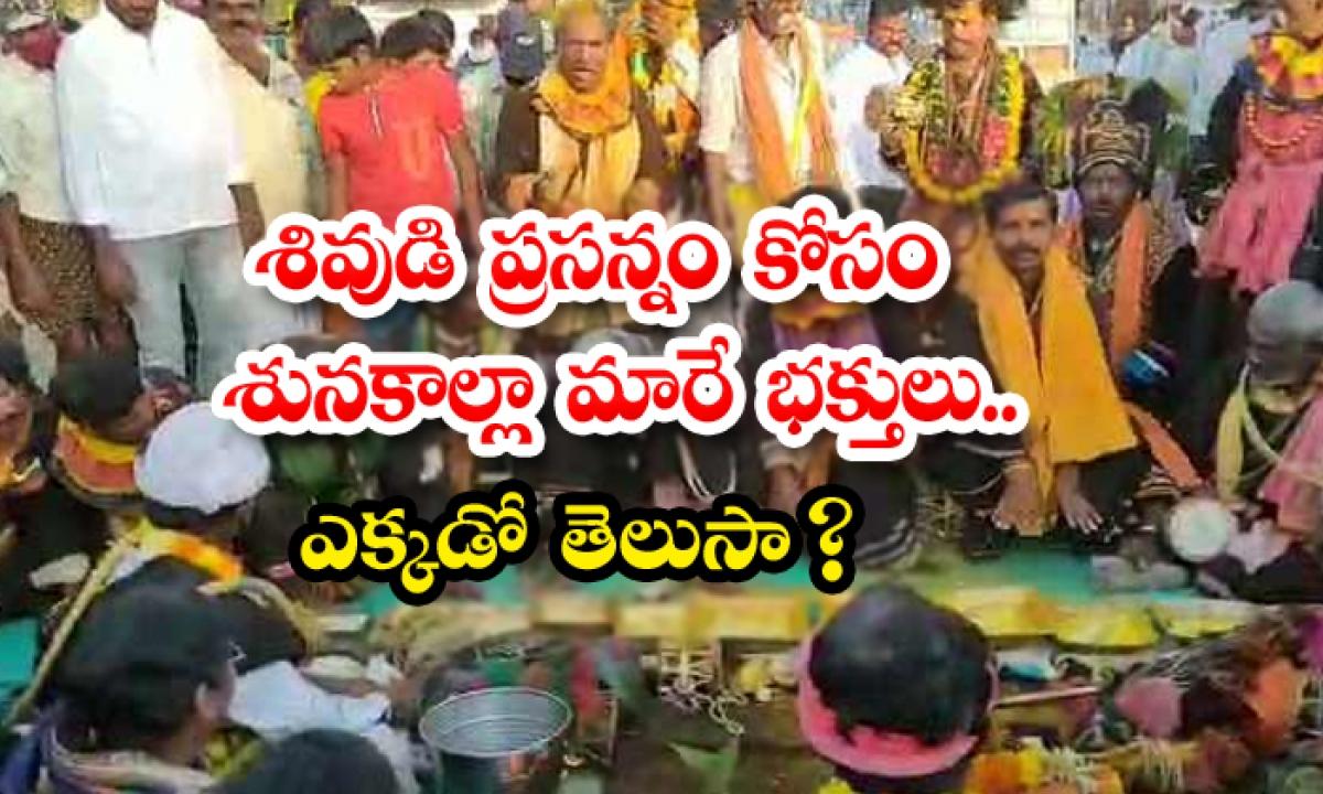 Gavi Matam Brahmotsavam In Anantapur District Andhra Pradesh Different Tradition-శివుడి ప్రసన్నం కోసం శునకాల్లా మారే భక్తులు… ఎక్కడో తెలుసా-Latest News - Telugu-Telugu Tollywood Photo Image-TeluguStop.com