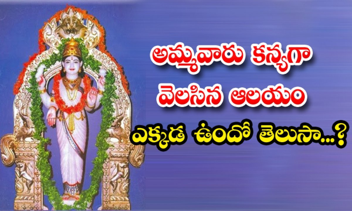 Goddess Who Waited Along Time For Lord Shiva And Remained As A Single-TeluguStop.com