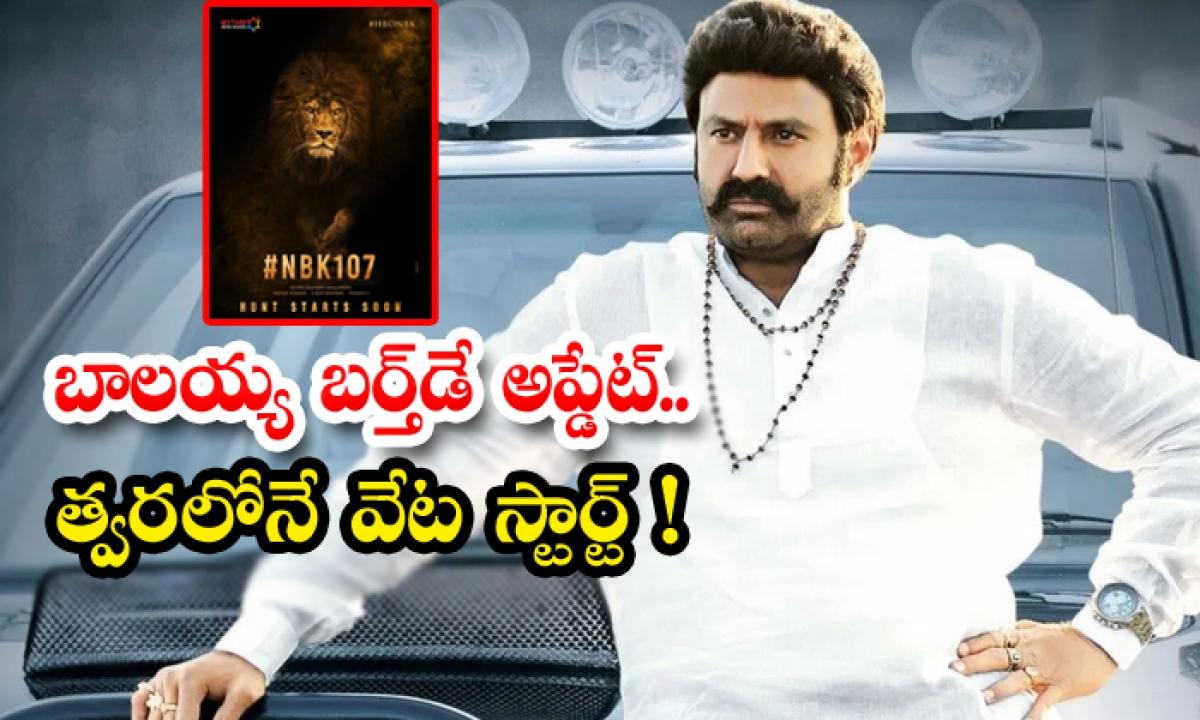 Balakrishna Movie With Gopichand Malineni-TeluguStop.com