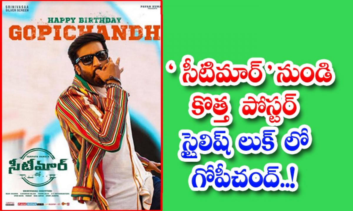 Seeti Maar Team Releases Poster For Gopichand-సీటిమార్' నుండి కొత్త పోస్టర్.. స్టైలిష్ లుక్ లో గోపీచంద్.. -Latest News - Telugu-Telugu Tollywood Photo Image-TeluguStop.com