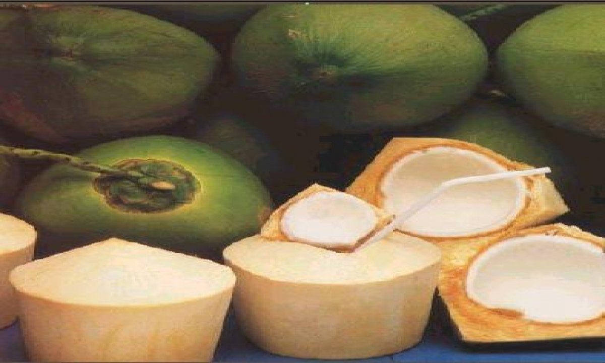 Health Benefits Of Natural Coconut Vitamins Weight Loss-కొబ్బరి బోండాంలో లేత కొబ్బరి తింటే ఎన్ని లాభాలో తెలుసా…-Telugu Health-Telugu Tollywood Photo Image-TeluguStop.com