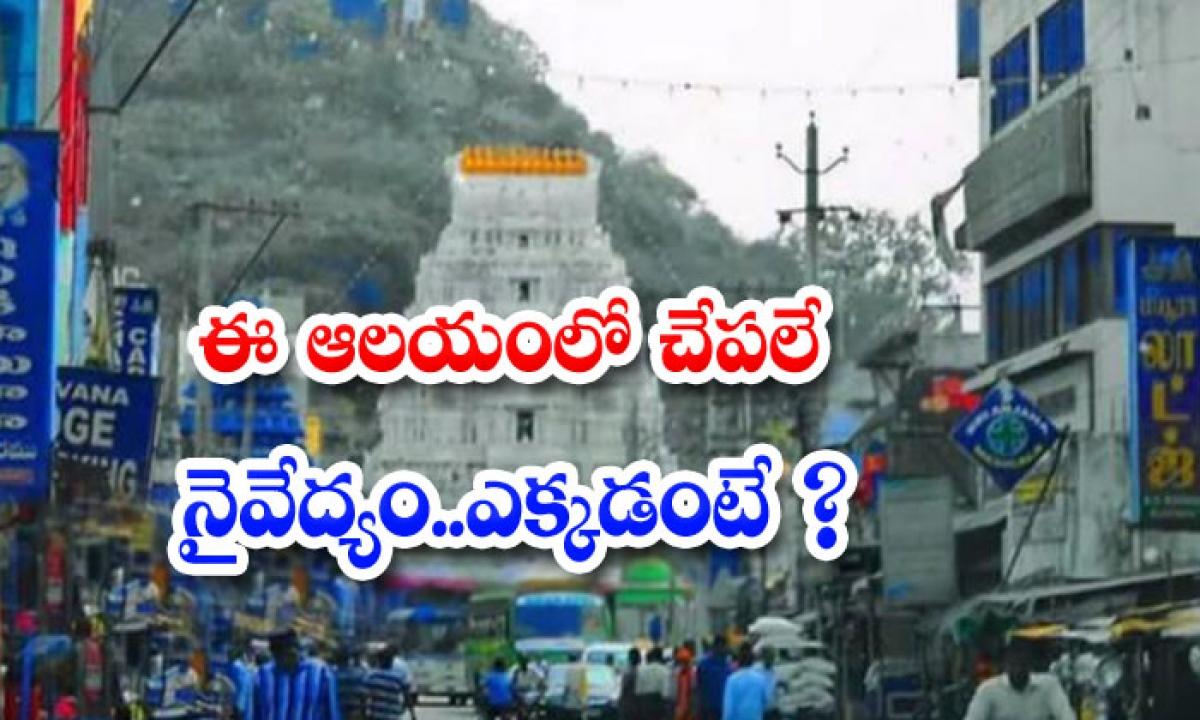 Interesting Facts About Gumpa Sangameshwara Swamy Temple-ఈ ఆలయంలో చేపలే నైవేద్యం.. ఎక్కడంటే-Latest News - Telugu-Telugu Tollywood Photo Image-TeluguStop.com