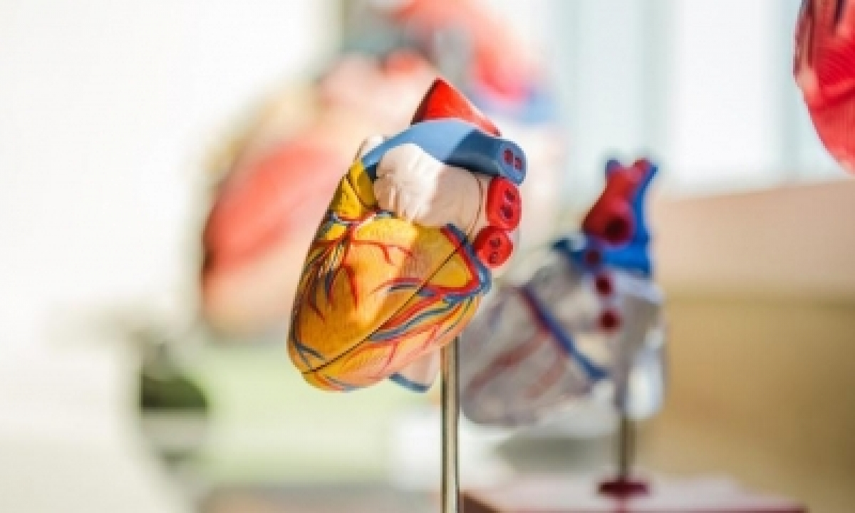 Has Covid Pandemic Contributed To Rise In Heart Disease In India?-TeluguStop.com