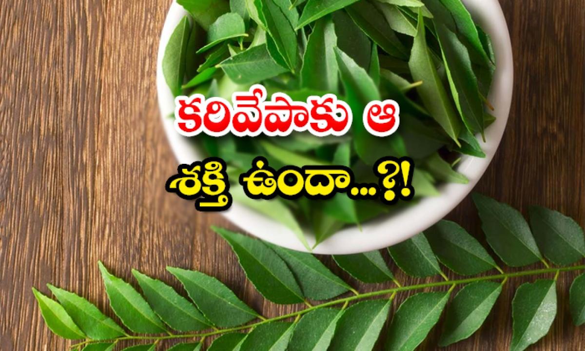 Does Curry Have That Power-కరివేపాకు ఆ శక్తి ఉందా..-General-Telugu-Telugu Tollywood Photo Image-TeluguStop.com