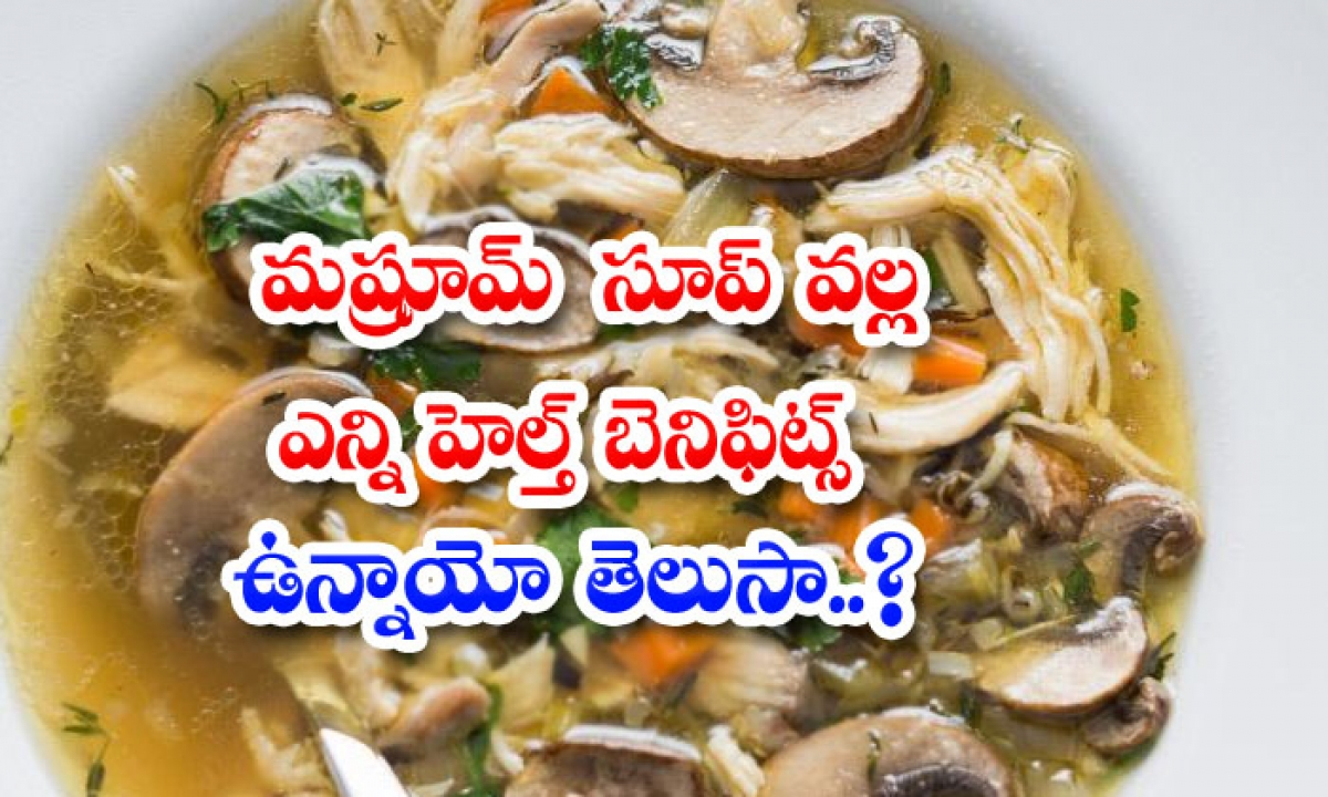 Health Benefits Of Mushroom Soup-మష్రూమ్ సూప్ వల్ల ఎన్ని హెల్త్ బెనిఫిట్స్ ఉన్నాయో తెలుసా-Latest News - Telugu-Telugu Tollywood Photo Image-TeluguStop.com