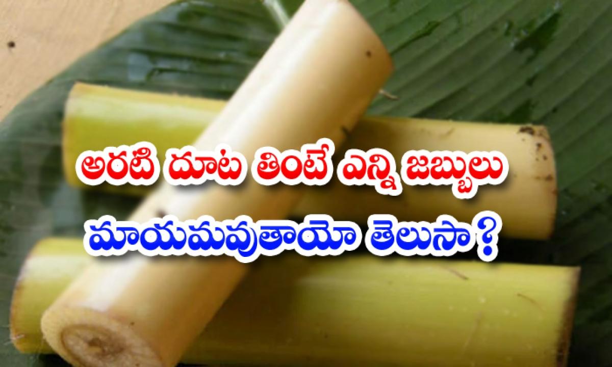 Amazing Health Benefits Of Plantain-TeluguStop.com
