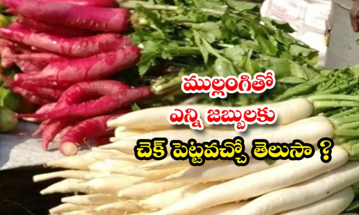 Health Benefits Of Radish-ముల్లంగితో ఎన్ని జబ్బులకు చెక్ పెట్టవచ్చో తెలుసా-Latest News - Telugu-Telugu Tollywood Photo Image-TeluguStop.com