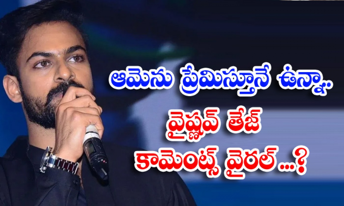 Hero Vaishnav Tej Interesting Comments About Heroine Sonakshi-TeluguStop.com