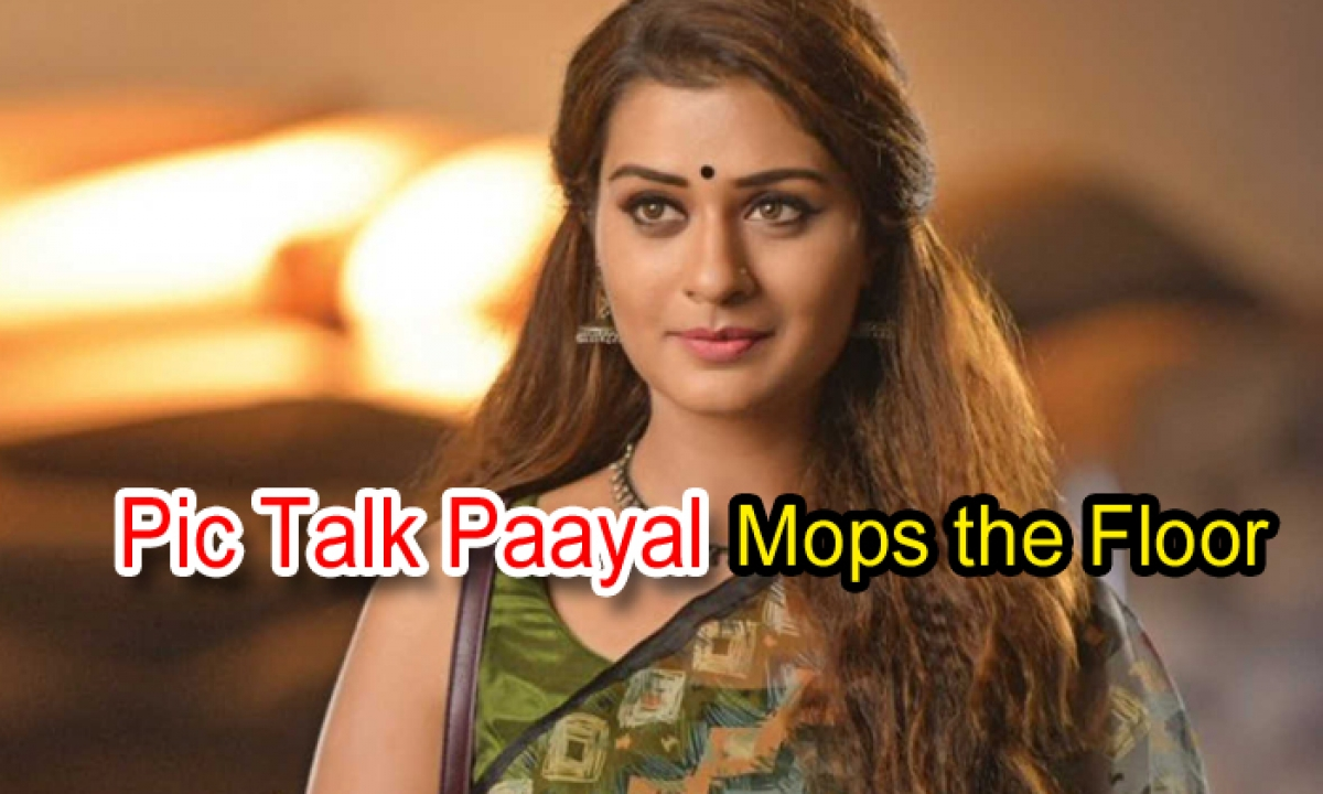 Pic Talk: Paayal Mops The Floor-Latest News English-Telugu Tollywood Photo Image-TeluguStop.com