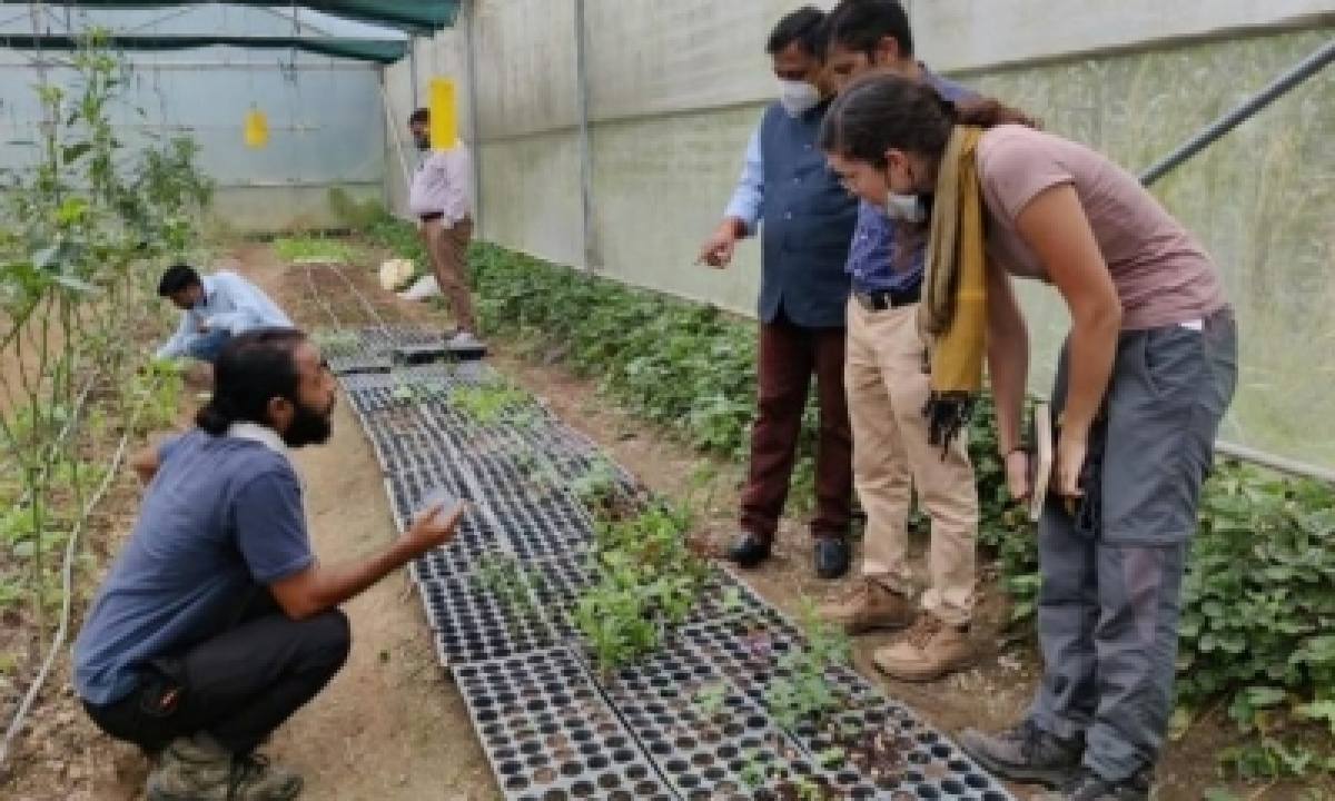 Himachal's Climate-resilient Agriculture Attracts Foreigners-Latest News English-Telugu Tollywood Photo Image-TeluguStop.com