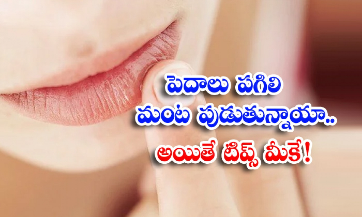 Home Remedies Chapped Lips Lip Care Lips Latest News-TeluguStop.com