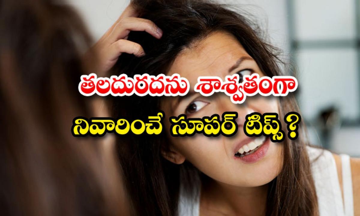 Home Remedies For Head Itching-తలదురదను శాశ్వతంగా నివారించే సూపర్ టిప్స్-Latest News - Telugu-Telugu Tollywood Photo Image-TeluguStop.com