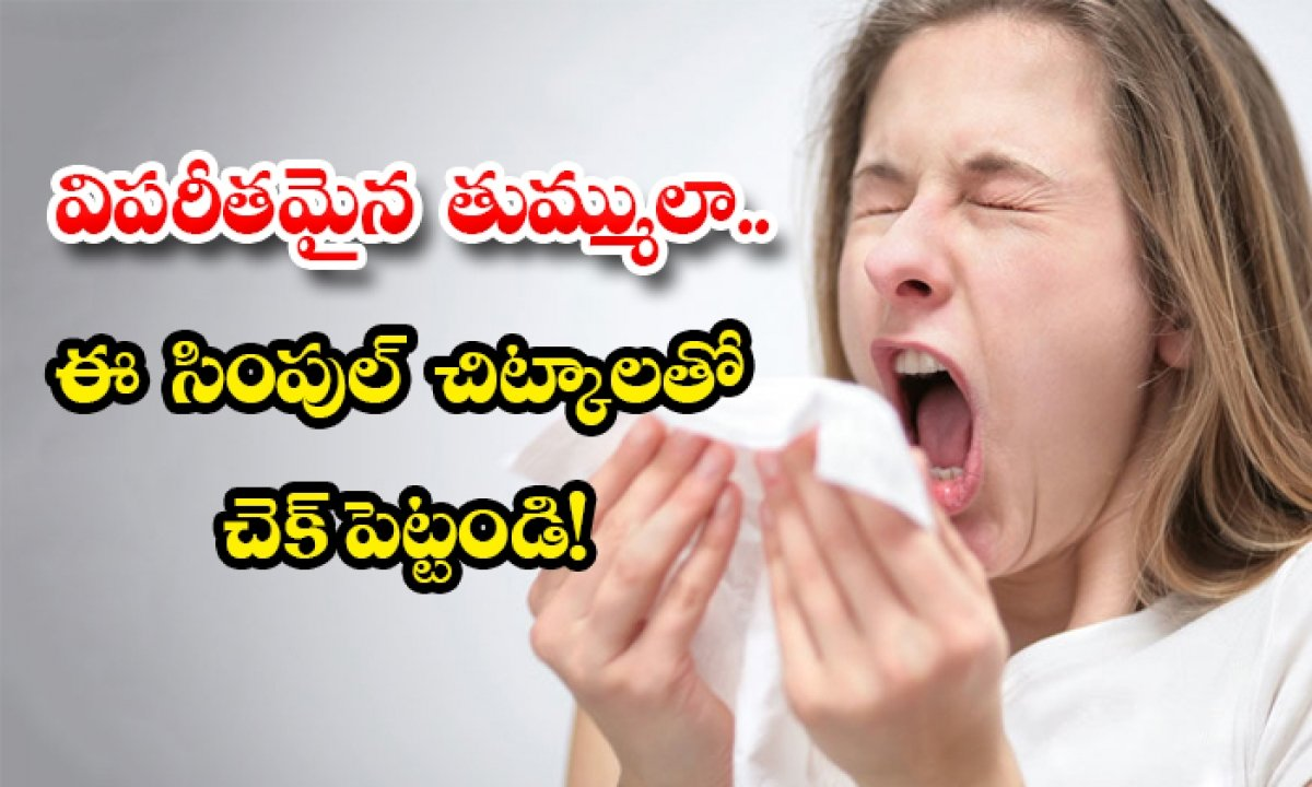 Home Remedies For To Stop Sneezing-TeluguStop.com