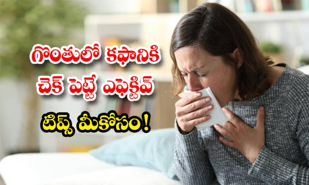Home Remedies To Remove Mucus From Throat-గొంతులో కఫానికి చెక్ పెట్టే ఎఫెక్టివ్ టిప్స్ మీకోసం-Latest News - Telugu-Telugu Tollywood Photo Image-TeluguStop.com