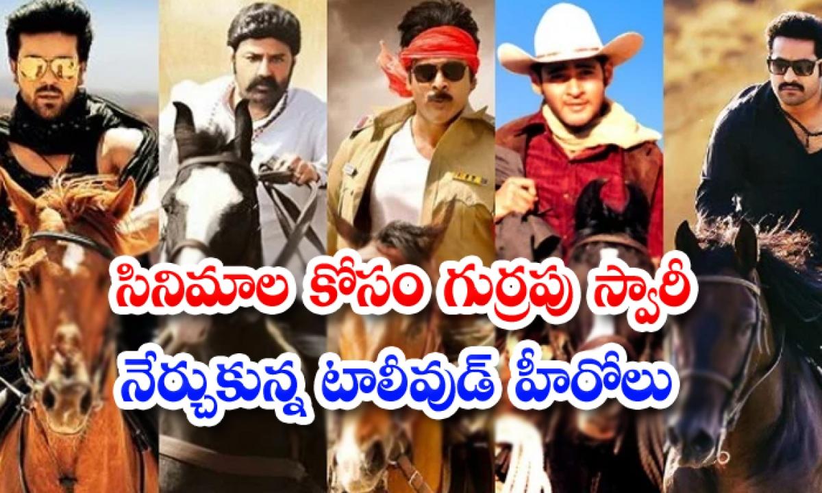 Tollywood Heros Who Learnt Horse Riding For Movies-సినిమాల కోసం గుర్రపు స్వారీ నేర్చుకున్న టాలీవుడ్ హీరోలు-Latest News - Telugu-Telugu Tollywood Photo Image-TeluguStop.com