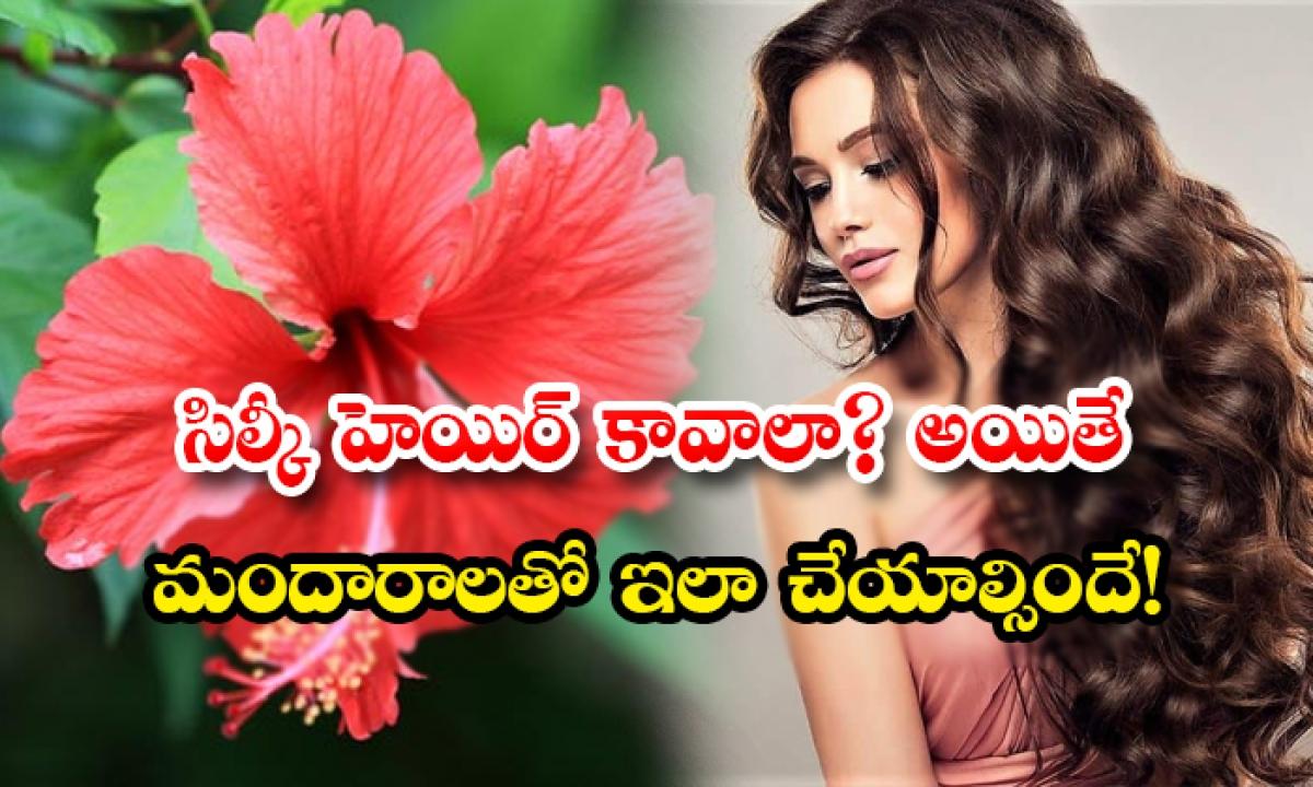 How To Get Silky Hair With Hibiscus-సిల్కీ హెయిర్ కావాలా అయితే మందారాలతో ఇలా చేయాల్సిందే-Latest News - Telugu-Telugu Tollywood Photo Image-TeluguStop.com