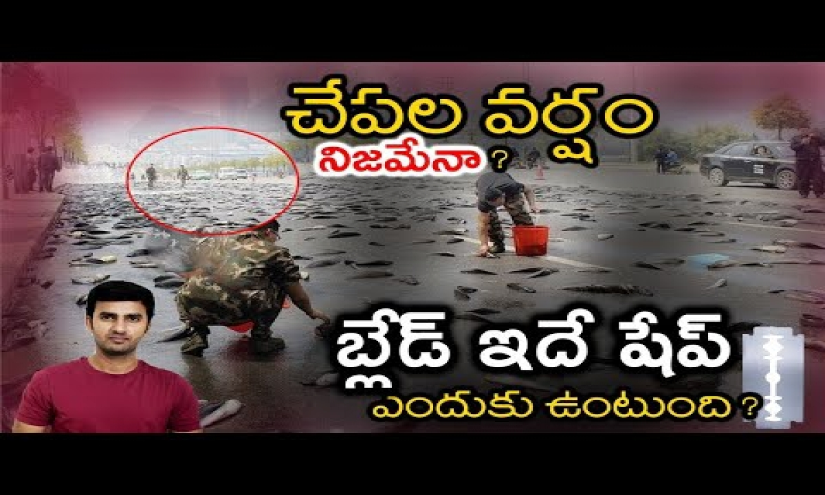 What Is The Reason Behind Fish Rains? | Why Can't We See The Air ? | Telugu Facts|-TeluguStop.com