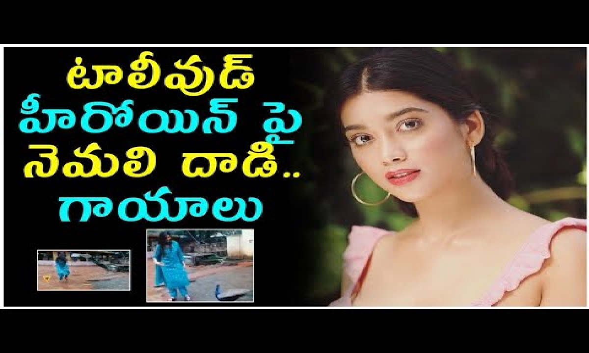 Digangana Suryavanshi Attacked By Peacock || Digangana Suryavanshi || Telugu Stop-TeluguStop.com