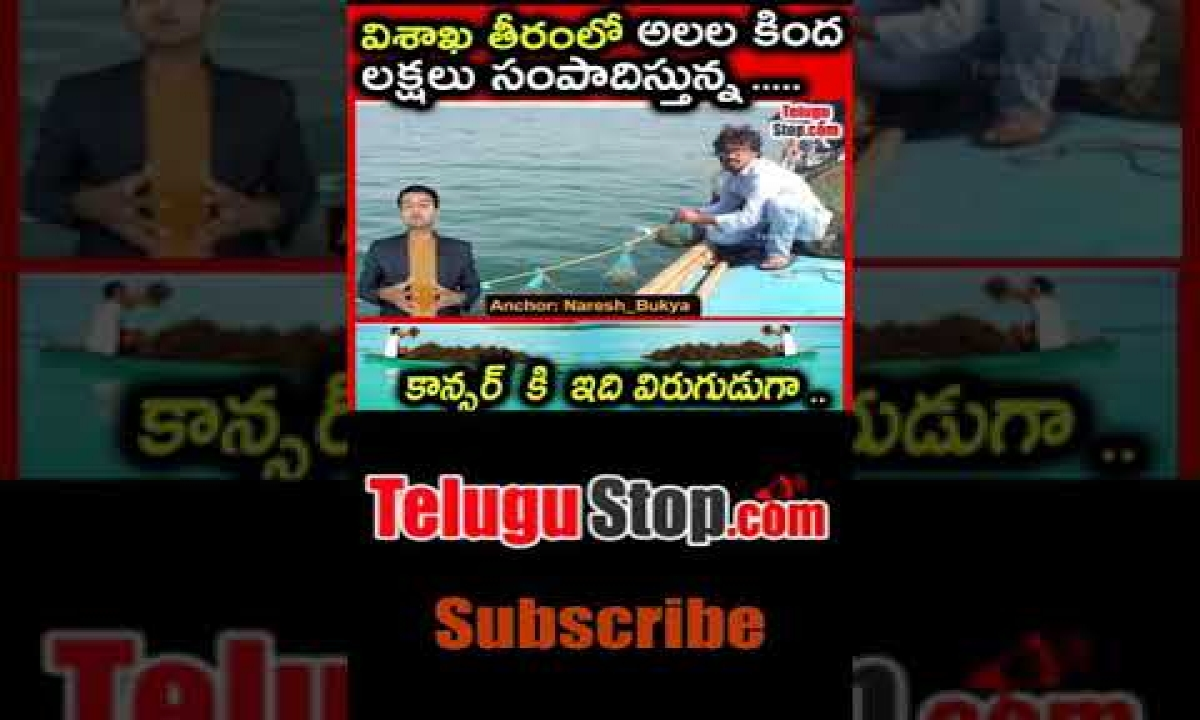 Seaweed Farming: Profitable Seaweeds Cultivation In Vizag-TeluguStop.com