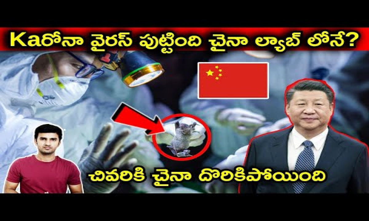 Interesting Facts About China Virus Origin Explained In Telugu |telugu Facts|-TeluguStop.com