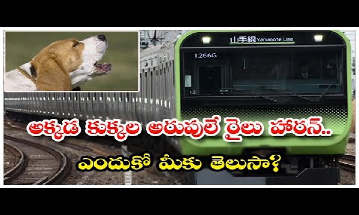 Why Japanese Trains Have Sounds Of Barking Dog As Horns | Dog Barking Trains In Japan | Telugu |-TeluguStop.com