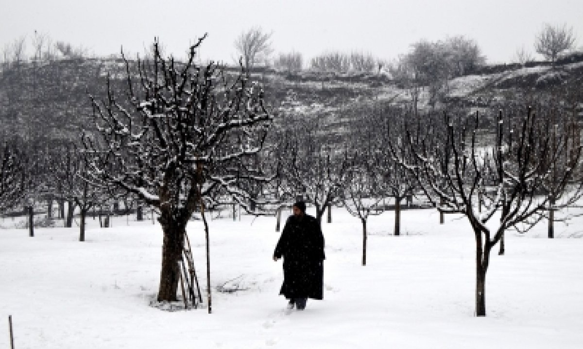 Intense Cold Amid Dry Spell Till Jan 31 In J&k, Ladakh-TeluguStop.com