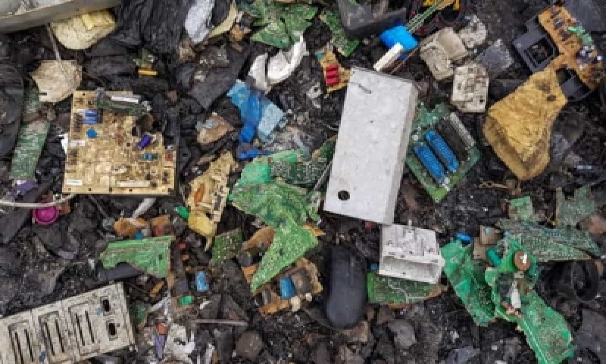 International E-waste Day: Discarded Cell Phones Richer In Gold Than Ore – Delhi | India News | National,environment/wildlife,spotlight-TeluguStop.com