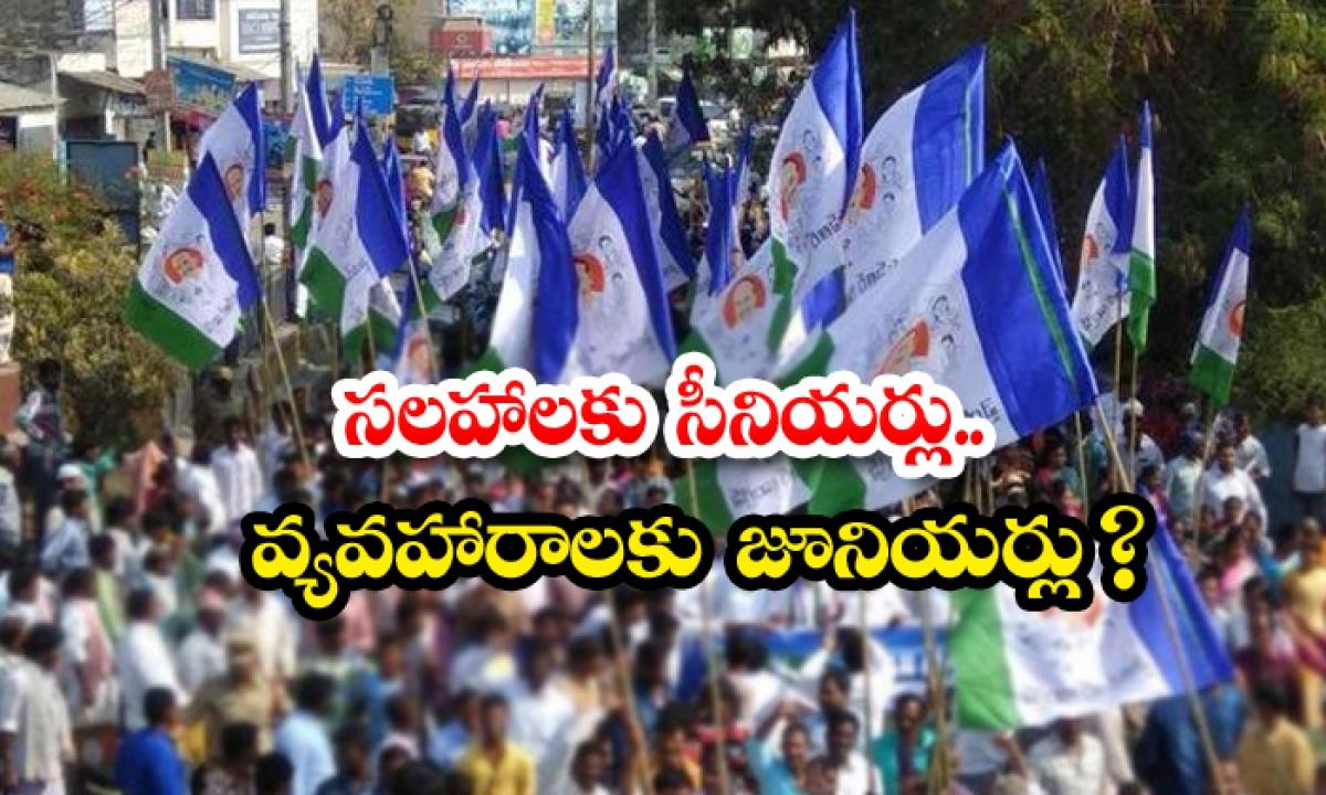 Jagan Who Gives High Priority To Young Leaders-సలహాలకు సీనియర్లు… వ్యవహారాలకు జూనియర్లు -Political-Telugu Tollywood Photo Image-TeluguStop.com
