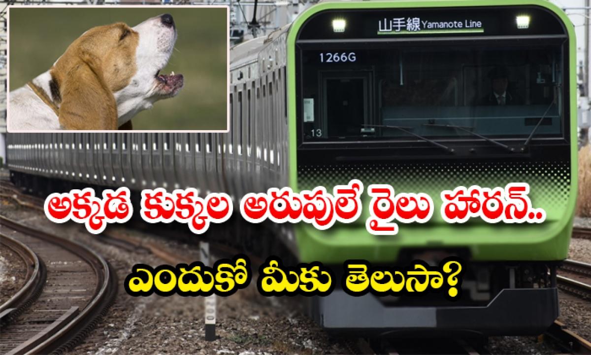 Japan Trains Sound Horn Be Like Dogs Barking Because-అక్కడ కుక్కల అరుపులే రైలు హారన్.. ఎందుకో మీకు తెలుసా-General-Telugu-Telugu Tollywood Photo Image-TeluguStop.com