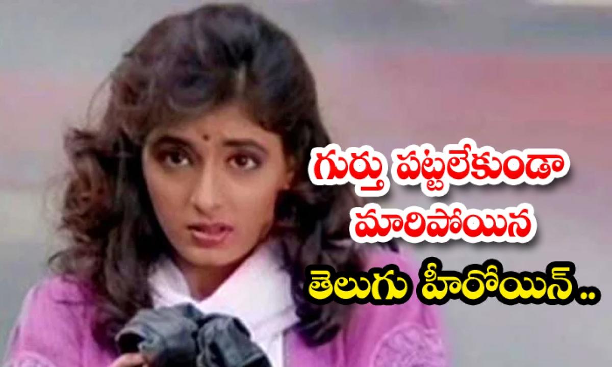 Allari Premikudu Movie Heroin Kanchana Real Life And Cine Career-TeluguStop.com